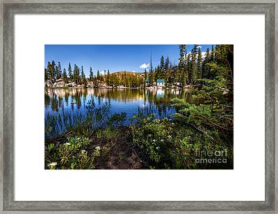 Cabins At Mosquito Lake Framed Print by Dianne Phelps