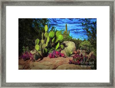 Cacti And Rock Framed Print by Jon Burch Photography