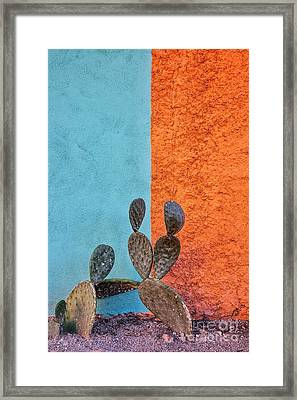 Cactus And Colorful Wall Framed Print by Matt Suess