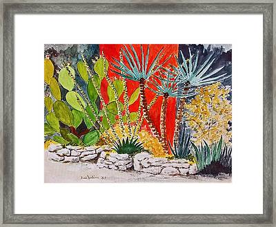 Cactus Garden  Framed Print by Fred Jinkins