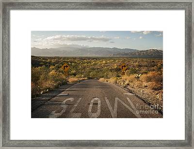 Cactus Landscape Framed Print by Juli Scalzi