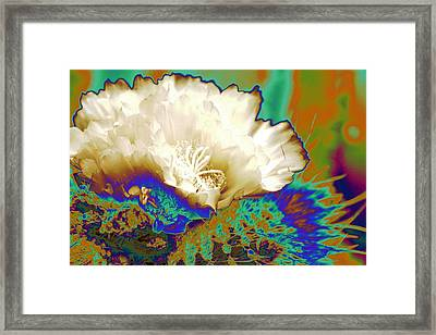 Cactus Moon Flower Framed Print by  Andrea Lazar