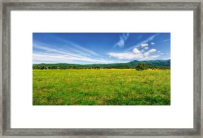 Cades Cove Meadow Framed Print by Frank J Benz