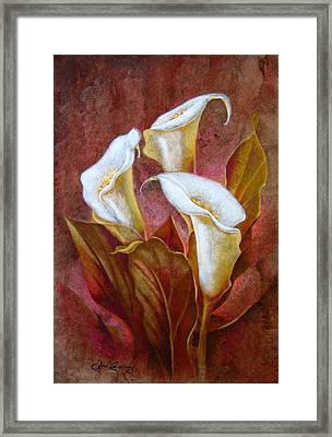 Cala Lillies Bouquet Framed Print by Jose Espinoza