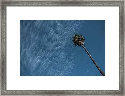 California Dreamin' Framed Print by Richard White