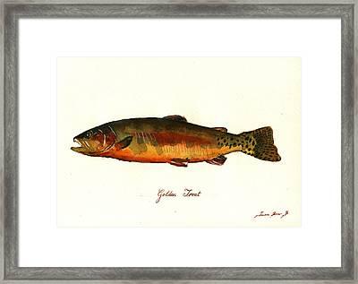 California Golden Trout Fish Framed Print by Juan  Bosco