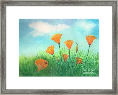 California Poppies Framed Print by Janet Hinshaw