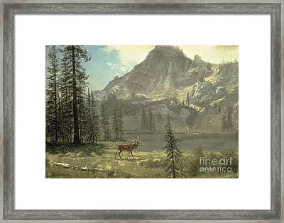 Call Of The Wild Framed Print by Albert Bierstadt