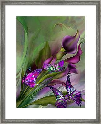 Calla Lilies Framed Print by Carol Cavalaris