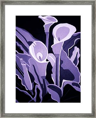 Calla Lillies Lavender Framed Print by Angelina Vick