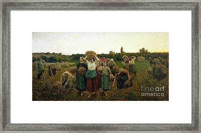 Calling In The Gleaners Framed Print by Jules Breton