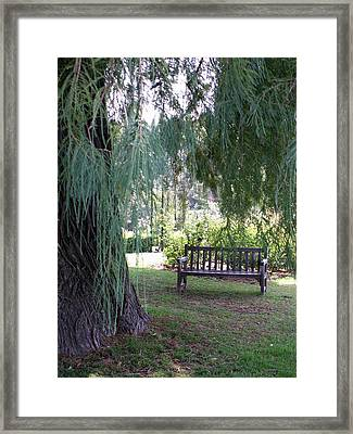 Calm Framed Print by Amy Fose
