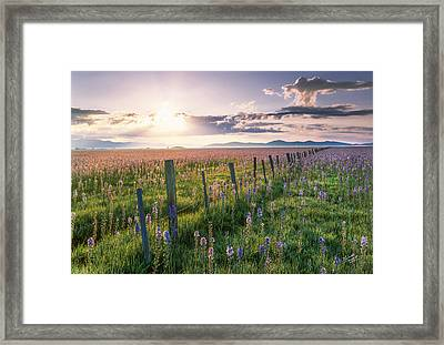 Camas Marsh 3 Framed Print by Leland D Howard