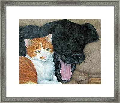 Can We Watch Something Other Than Big Cat Diary Framed Print by Beverly Fuqua