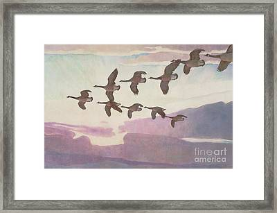 Canada Geese In Spring Framed Print by Newell Convers Wyeth