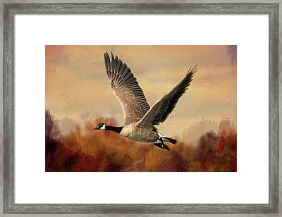 Canadian Air Framed Print by Donna Kennedy