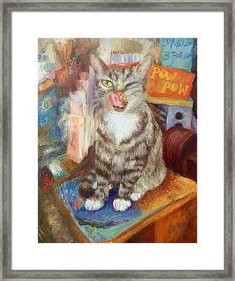 Canal St.bodega Cat By Register Framed Print by Joan Meyer