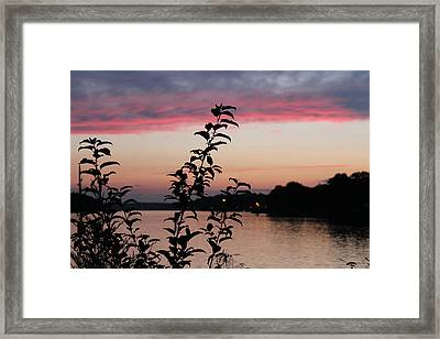Canal Sunset Framed Print by Shirley Doud