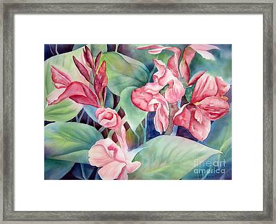 Canna Framed Print by Deborah Ronglien