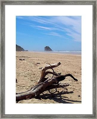 Cannon Beach Driftwood Framed Print by Lori Seaman