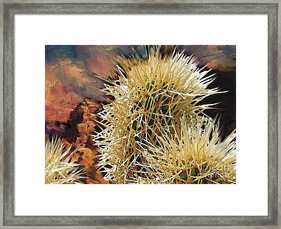 Canyon Cactus Framed Print by Bob Salo