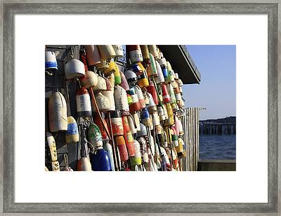Cape Cod Buoys Framed Print by Dapixara Art