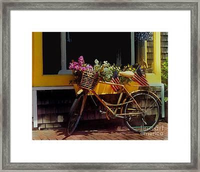 Cape Cod Petals Framed Print by Diane E Berry