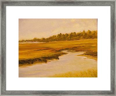 Cape Marsh Framed Print by Paul Galante