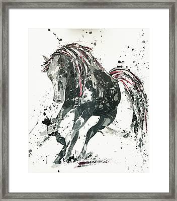 Capriccio Framed Print by Penny Warden
