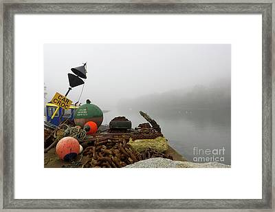 Car Croc Framed Print by Terri Waters