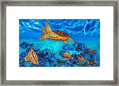 Caribbean Sea  Turtle And Reef  Fish Framed Print by Daniel Jean-Baptiste