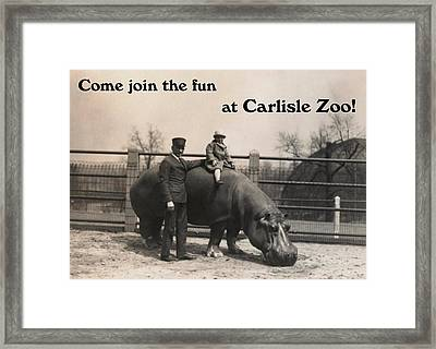 Carlisle Zoo Framed Print by Justin Farrimond