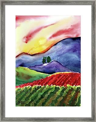 Carneros Sunset Framed Print by Amelia Hunter