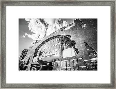 Carolina Panthers Stadium Black And White Photo Framed Print by Paul Velgos