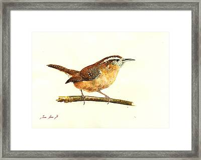 Carolina Wren Watercolor Painting Framed Print by Juan  Bosco