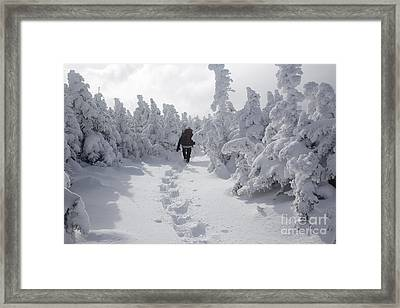 Carter Dome - White Mountains New Hampshire Framed Print by Erin Paul Donovan