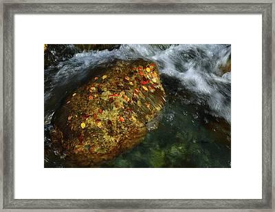 Cascade Creek 2am-000846 Framed Print by Andrew McInnes