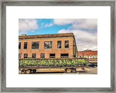 Cash Crop Framed Print by Chad Fuller