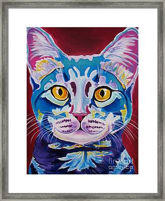 Cat - Mystery Reboot Framed Print by Alicia VanNoy Call