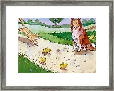 Cat Chasing Chicks Framed Print by Valer Ian
