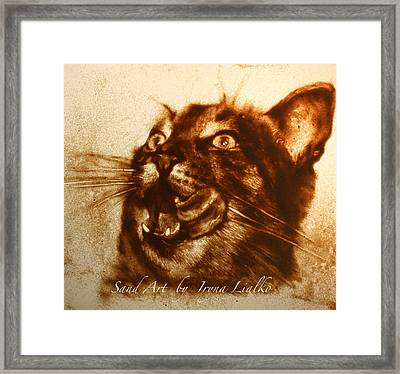 Cat Framed Print by Iryna Lialko