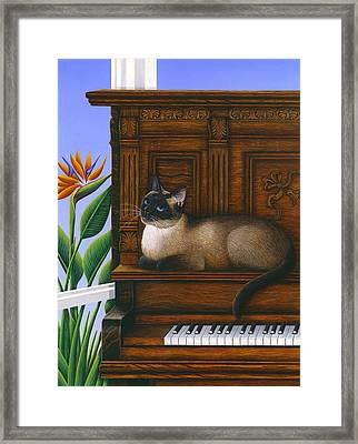 Cat Missy On Piano Framed Print by Carol Wilson