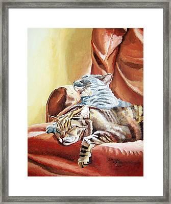 Cat Nap Framed Print by Dominic White
