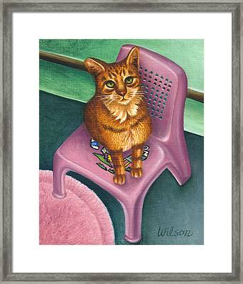 Cat Sitting On A Painted Chair Framed Print by Carol Wilson