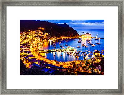 Catalina Island Avalon Bay At Night Framed Print by Paul Velgos