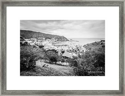Catalina Island Avalon California Black And White Photo Framed Print by Paul Velgos