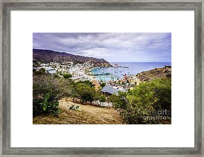 Catalina Island Avalon California From Above Framed Print by Paul Velgos
