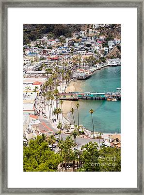 Catalina Island Avalon Waterfront Aerial Photo Framed Print by Paul Velgos