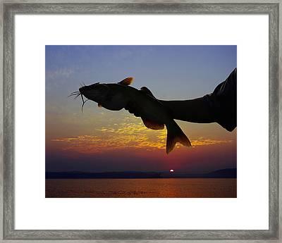 Catfish At Sunrise Framed Print by Ron Kruger