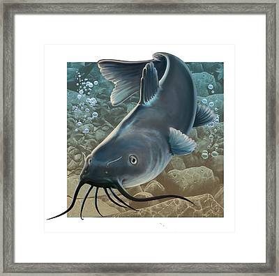 Catfish Framed Print by Valer Ian